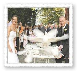 Hochzeitstaubenservice - Auflass der Tauben